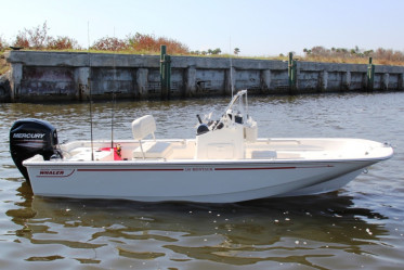 Boston Whaler Montauk 150
